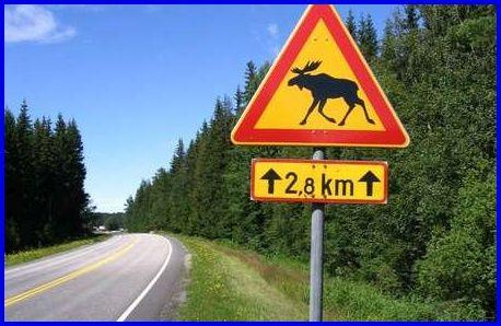 16 juli favorite Finland